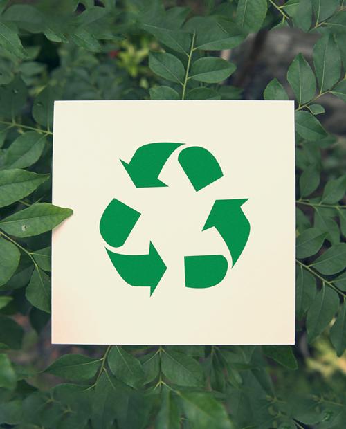 Nuevas iniciativas sostenibles de Copefrut