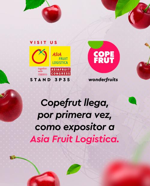Por primera vez, Copefrut llega como expositor a Asia Fruit Logistica 2019 en Hong Kong.